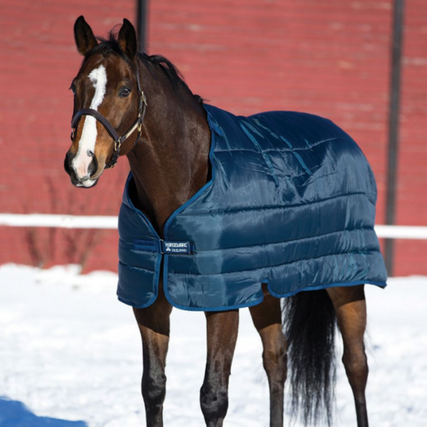 Horseware Liner 100g zoomed out