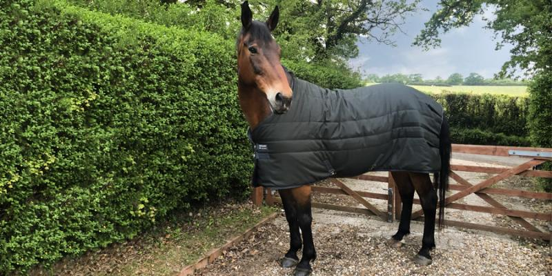 Horseware Stable Rug 200g - Tried and Tested