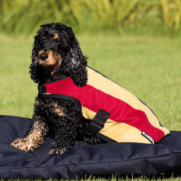 Rambo Deluxe Dog Rug red