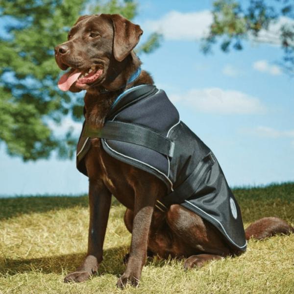 WeatherBeeta Parka 1680D Dog Rug front