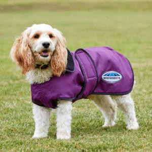 Weatherbeeta 420D Windbreaker Deluxe Dog Rug