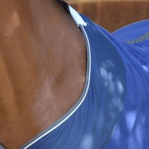 Weatherbeeta Fleece Cooler Standard Neck Dark Blue Grey & White - Shoulder