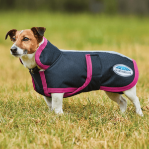 Weatherbeeta Parka 1200D Deluxe Dog Coat Black