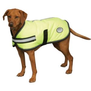 Weatherbeeta Parka 300D Dog Rug - Yellow when worn