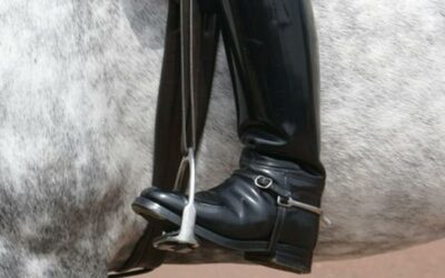 Riding Boots – Why do I need them?