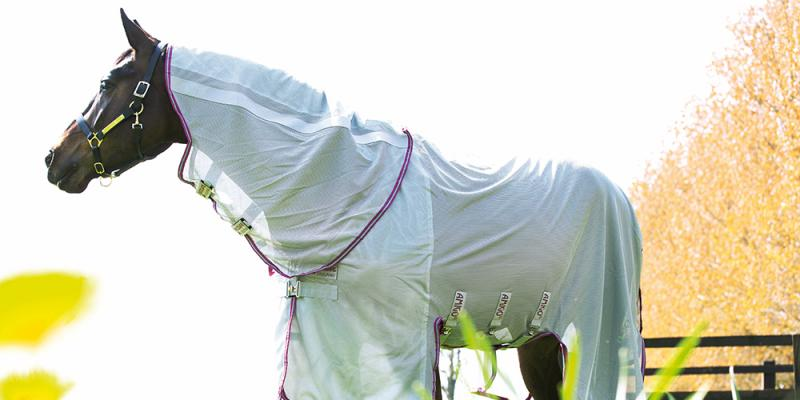 Fly Rug Buying Guide: Our Top 5