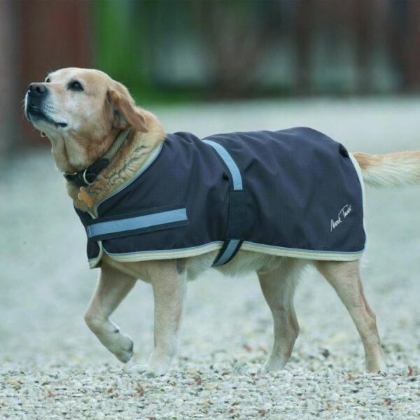 Mark Todd Waterproof Dog Rug