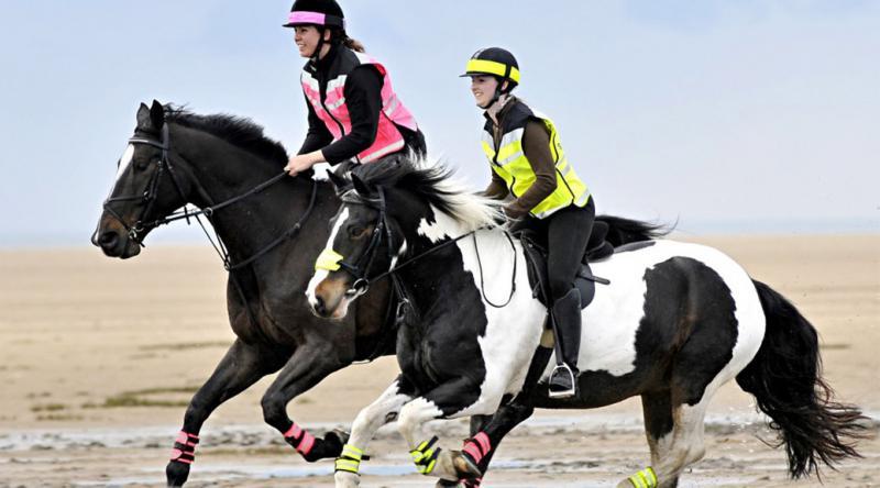 Reflective Riding Wear - Be Safe