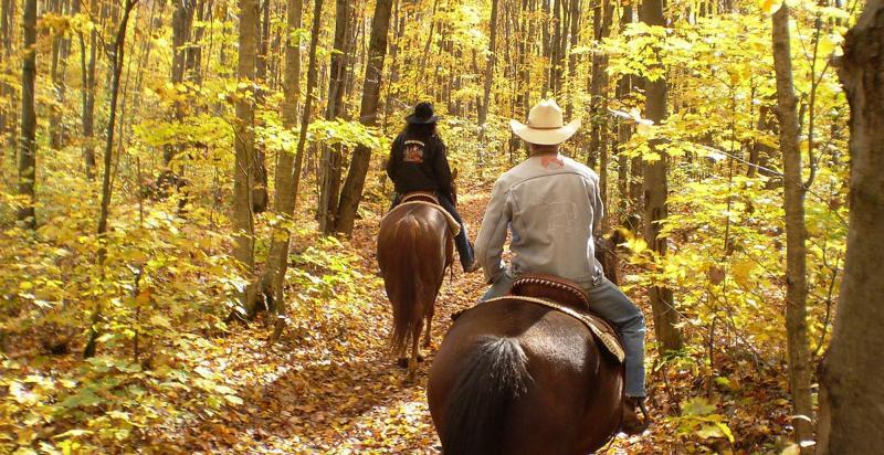 Horseback Holidays – Ride of your Life