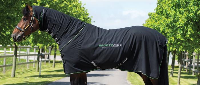 Horse and Dog Massage Therapy: Horseware's Sportz-Vibe