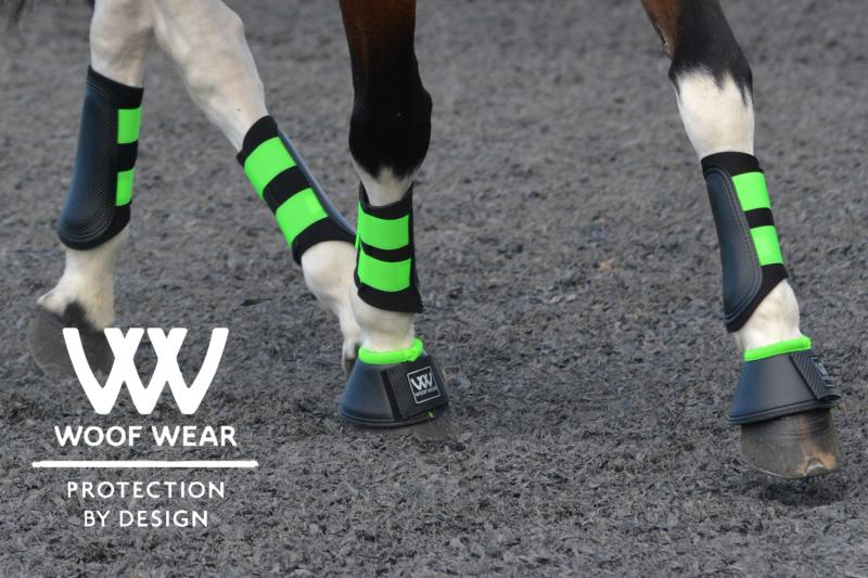 Woof Wear - Our Top Picks