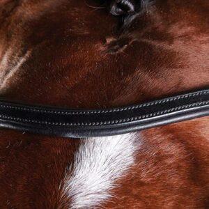 Comfitec Training Bridle - Detail