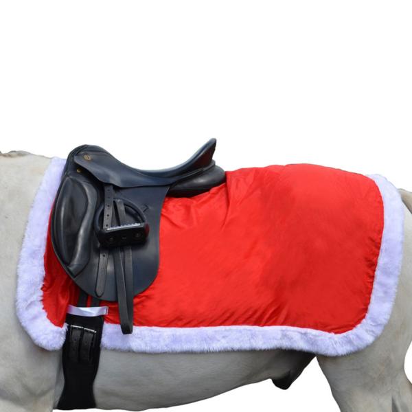 "Christmas Santa Exercise Sheet 4ft 9"""