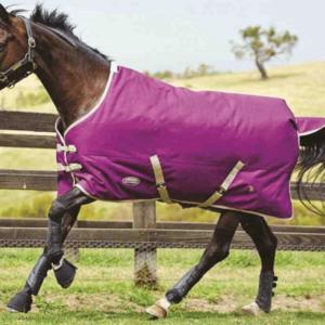 Weatherbeeta Genero 1200 Pony Standard Medium Turnout - Purple Taupe